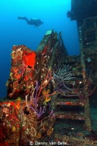Chien Tong wreck - St. Eustatius by Danny Van Belle