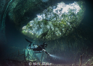 A diver explores Ponderosa Cenote, Mexico.  by Nick Blake