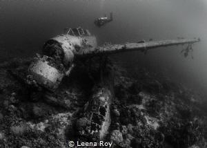 jack sea plane,palau by Leena Roy