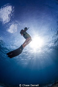 """""""Going Up"""" A free diver heads for the surface. by Chase Darnell"""
