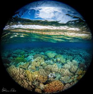 Kaleidoscope. by Steven Miller