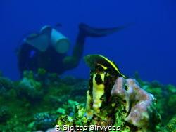 Reefs wather. by Sigitas Sirvydas