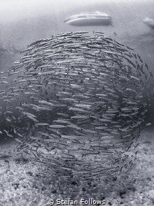 My World, My Rules ...