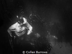 Surprise moment by Collen Burrows