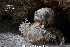 """Spring Cleaning!""