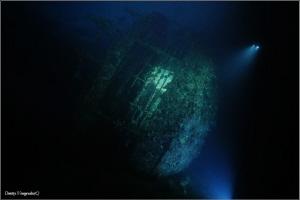 Red Sea. Sudan. Umbria wreck. Night dive. by Dmitry Vinogradov