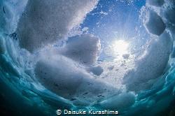 Drift ice diving in Shiretoko,Hokkaido,Japan. by Daisuke Kurashima