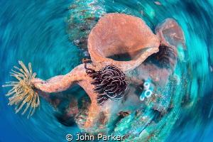 Spin Shot..... by John Parker