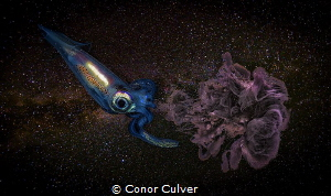 """Inking Through the Universe"" part of my Underwater Surre... by Conor Culver"