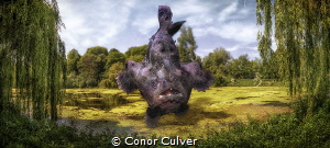 """Leap Frog Over the Pond"" part of my Underwater Surrealis... by Conor Culver"