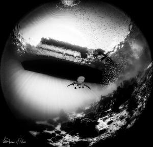 Dead calm by Steven Miller