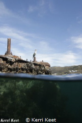 he engine block of the Clan Stuart is above the water lin... by Kerri Keet