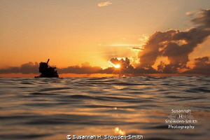 """""""After The Dive"""" We surfaced from a magical dive to this... by Susannah H. Snowden-Smith"""