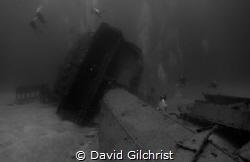 Divers explore El Aguila Wreck, Roatan , Honduras  by David Gilchrist