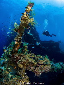 Sweet Liberty VII