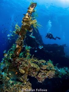 Sweet Liberty VII  Liberty Wreck, Bali by Stefan Follows