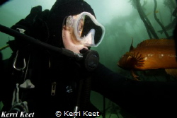 Selfie with a klipfish in the cool Cape Town waters where... by Kerri Keet