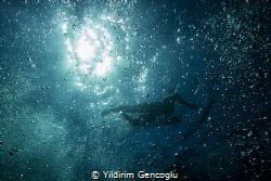 Flying in the space. by Yildirim Gencoglu