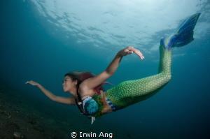 B E A U T Y Mermaid (Odessa Bugarin) Anilao, Philippines. by Irwin Ang
