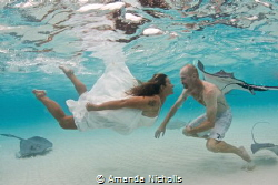 Trash the Dress at the famous Stingray Sandbar by Amanda Nicholls