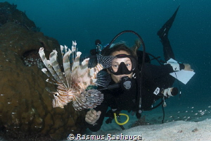 Having fun with lionfish by Rasmus Raahauge