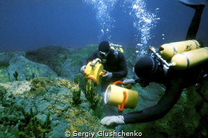 Why is not the list of water bodies the deepest lake in t... by Sergiy Glushchenko