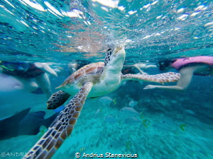 captured with gopro 3+ while snorkeling by Andrius Stanevicius