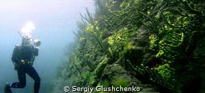 Lake Baikal. by Sergiy Glushchenko
