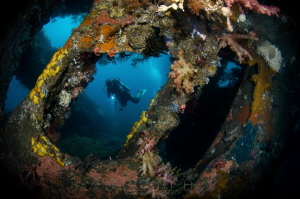 E N G I N E - R O O M  USAT Liberty Wreck Tulamben, Ind... by Irwin Ang