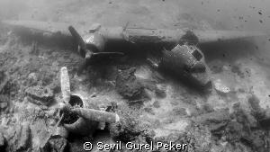 Plane wreck by Sevil Gurel Peker
