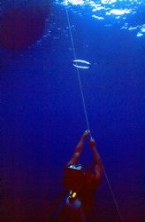 AIR RINGS! Deco stop fun at Ant Atoll, Pohnpei. Housed Ni... by Rick Tegeler