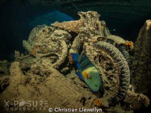 Location: Red Sea - SS Thistlegorm - WW2 BSA Motorbike O... by Christian Llewellyn