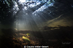 sunrays..... freshwater, River Nims in Germany by Claudia Weber-Gebert