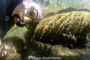 Proper selfie. by Sergiy Glushchenko