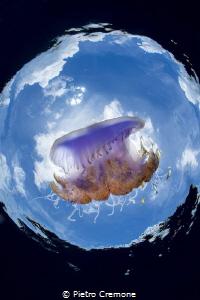 Jelly world by Pietro Cremone