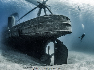 'Suspended' - A diver descends to the wreck of the Kittiw... by Tanya Houppermans
