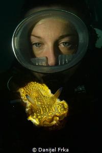 Nudibranch and diver by Danijel Frka