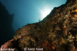 Reef of Aliwal Shoal with sunlight in the background by Kerri Keet