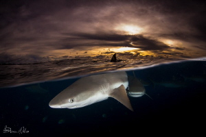 Yap evening splits. We lost a stop every few minutes as t... by Steven Miller