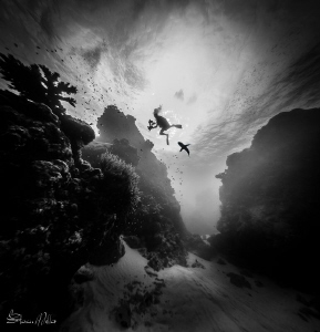 Canyon of death.  (trying to set a mood there :-) by Steven Miller