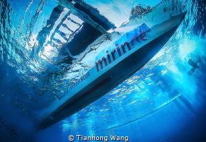 DREAM BOAT by Tianhong Wang