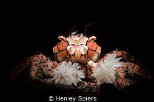 Underwater Cheerleader by Henley Spiers