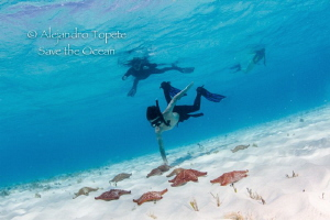 Stars and snorkelers, Cozumel Mexico by Alejandro Topete