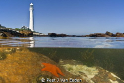 Guardian over the ocean life. A lighthouse at the Cape Pe... by Peet J Van Eeden