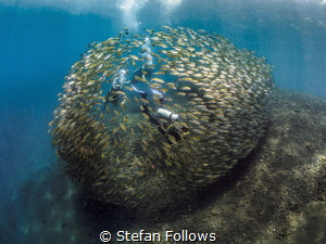 en·vel·ope