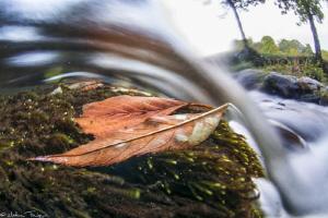 long exposure over-under (Agout river, France) by Mathieu Foulquié
