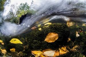 Arn river by Mathieu Foulquié