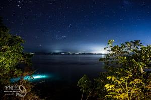 Night dive under the stars by Mona Dienhart