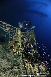 """Wreck """"Valfiorita"""", sunk during the Second World War, fol... by Alessandro Pagano"""