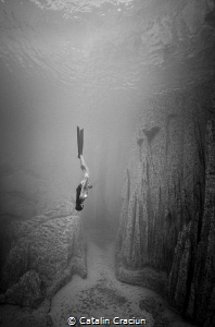''Exhale'' . MJ Paula freefalling early into a dive after... by Catalin Craciun